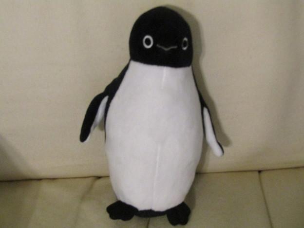 Photos: No.278 JR東日本 Suicaのペンギングッズコレクション ペンコレ! ぬいぐるみマスコット