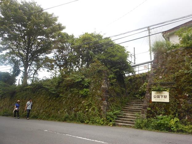 No.282 OH58 箱根登山鉄道鋼索線 公園下駅 北側出入り口付近