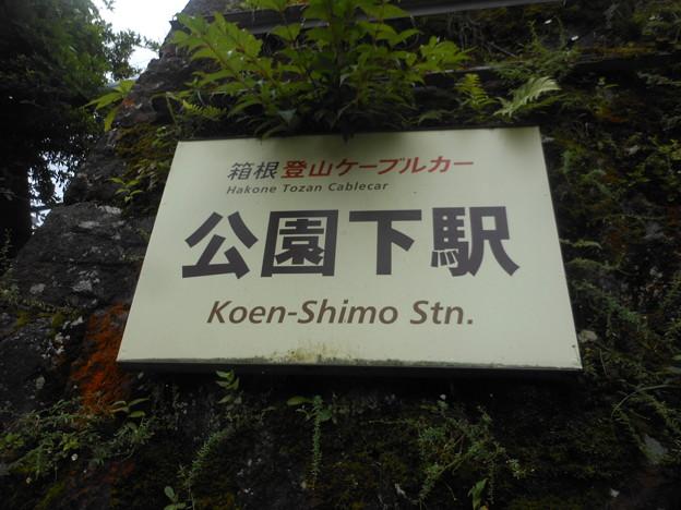 No.294 OH58 箱根登山鉄道鋼索線 公園下駅 北側第1種