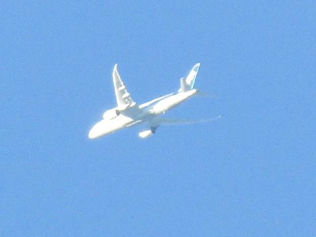 No.393 ANA(全日空)の飛行機 All Nippon Airways