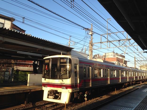 No.421 京王電鉄8000系@2019.01.13柴崎駅