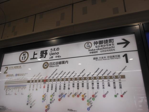 H17 上野 Ueno