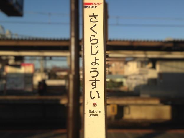 KO08 桜上水 Sakurajōsui