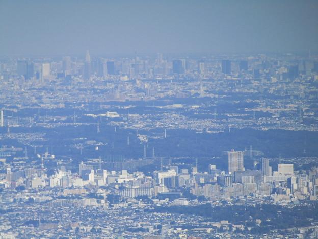 都心を眺める(丹沢大山・見晴台)@神奈川県伊勢原市大山
