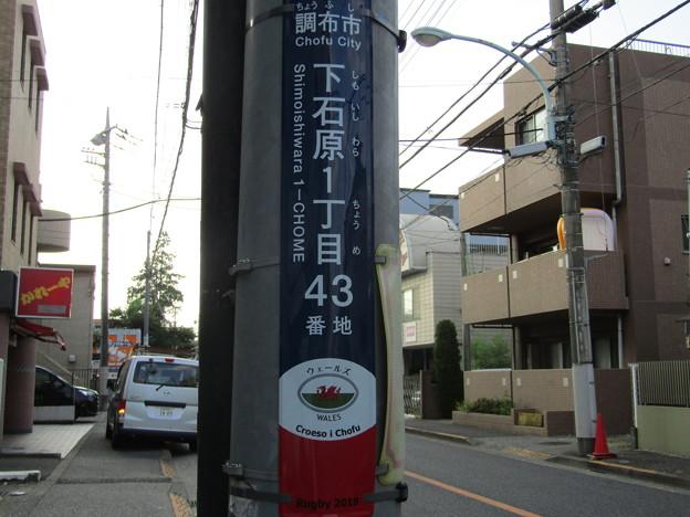 No.832 200825_下石原一丁目43_ウェールズ_東京都調布市