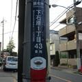 Photos: No.832 200825_下石原一丁目43_ウェールズ_東京都調布市