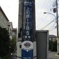 No.838 200825_上石原一丁目5_ナミビア_東京都調布市