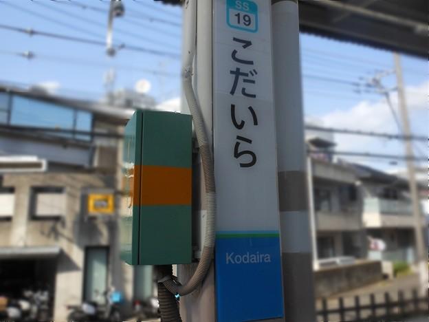 SS19 小平 Kodaira