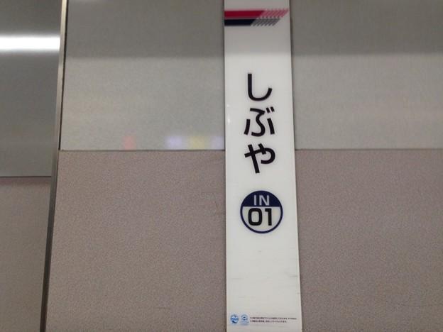 IN01 渋谷 Shibuya