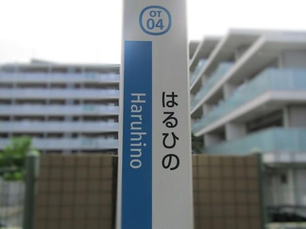 OT04 はるひ野 Haruhino