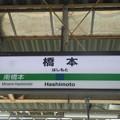 Photos: 橋本 Hashimoto