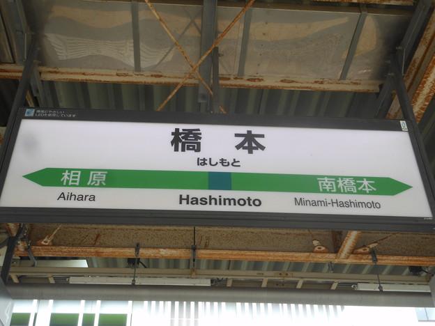 橋本 Hashimoto