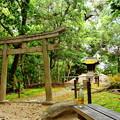 Photos: 岡山後楽園