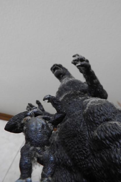 Photos: Godzilla vs. Kong on 本棚