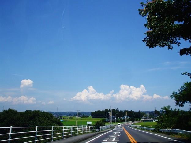 熱いぞ 気温41度 青い空にわき上がる雲が好き (1)