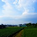 Photos: 200811 1552