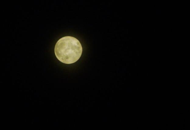 今夜はおぼろな満月