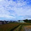 Photos: 201011 1159