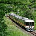 Photos: 373系 さわやかウォーキング号