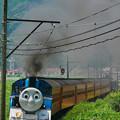 写真: 大井川鉄道  きかんしゃトーマス