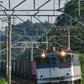 写真: EF65-2090 カモレ