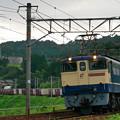 Photos: EF65-2139
