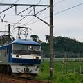 Photos: 福山レールエクスプレス EF210-1