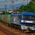 写真: 福山レールエクスプレス EF210-1