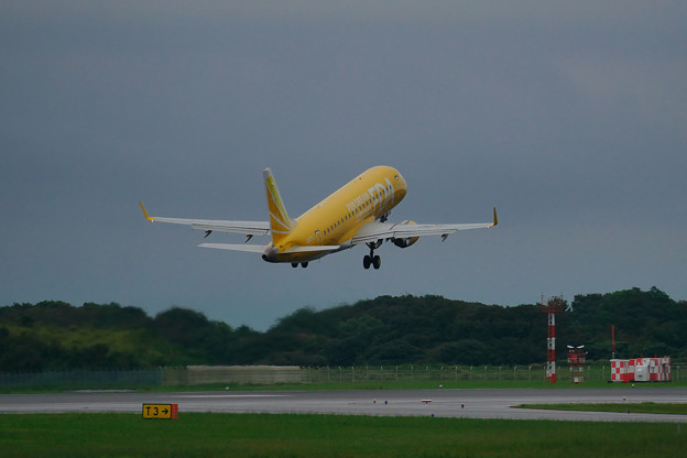 静岡空港 FDA