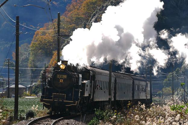臨時SL C11-190