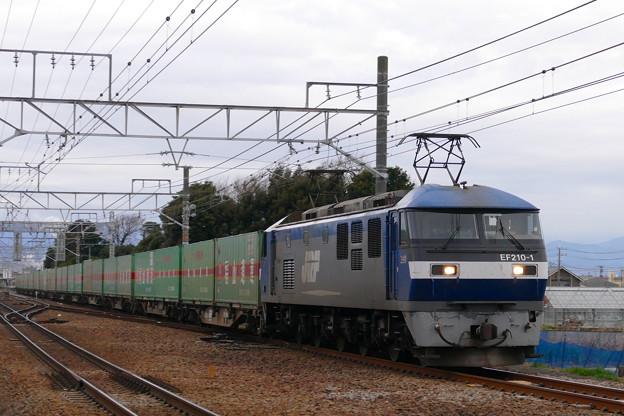 P1430353-1