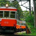 Photos: 箱根登山鉄道