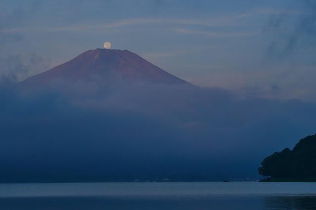 Photos: パール富士
