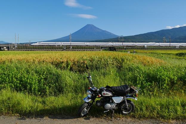 9/8の富士山とモンキー