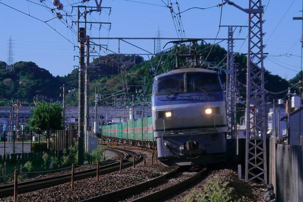 P1180288-1