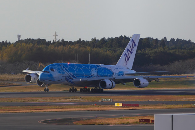 A380 ホヌ