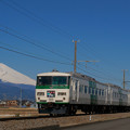 Photos: 185系踊り子号
