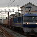 Photos: 押桃EF210-312