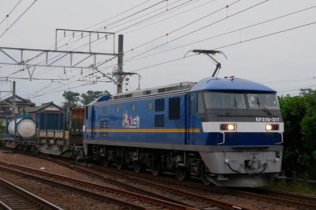 EF210-317