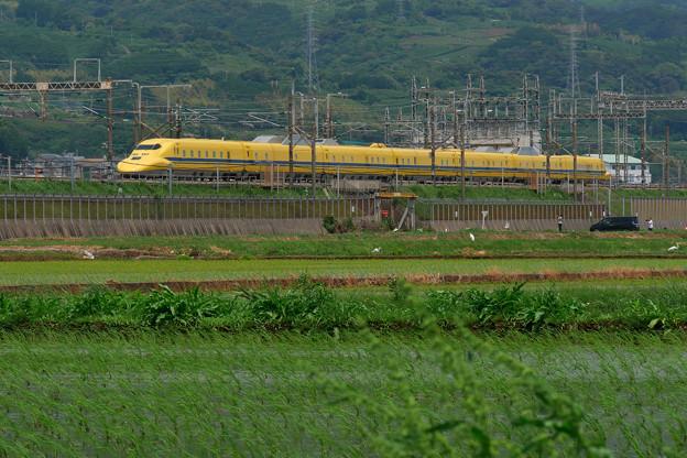 P1060424-1
