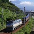 P1460067