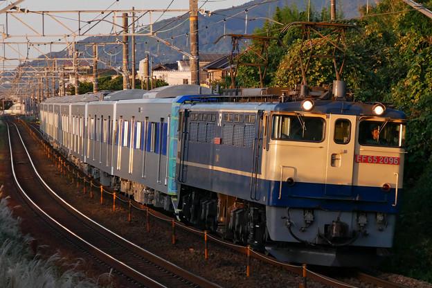 P1070584-1