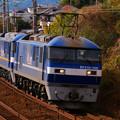 Photos: P1080450-1
