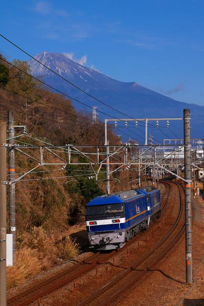 Photos: P1080451-1