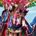 写真: 中米ジャンカン馬踊り