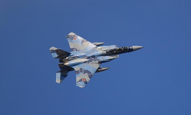 Photos: F15 アグレッサー