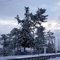 Photos: 氷見線 雨晴駅