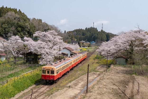 小湊鉄道 月崎駅