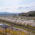 Photos: 東北本線 船岡駅付近