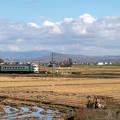 札沼線 於札内駅